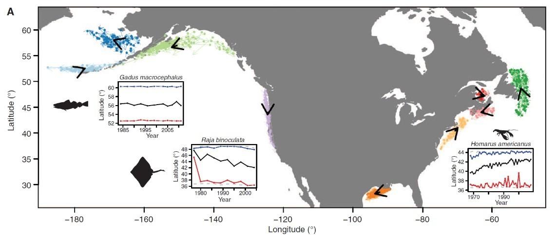 cambios distribucion pesca