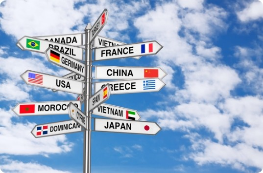 Algunas opciones para asegurar tus riesgos internacionalmente